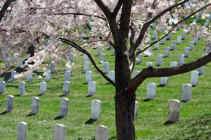 cremation service in Greenville, MI